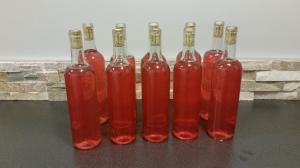 First Batch of Rhubarb Wine